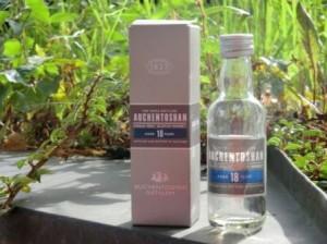 Eine Flasche Auchentoshan 18 Jahre mit Verpackung